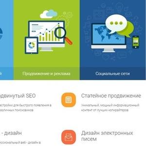 Создание и продвижение продающих сайтов. Разработка маркетинговых стратегий для привлечения клиентов.