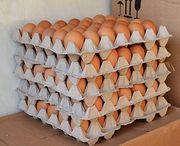 Куриное яйцо оптом. С1,  С2,  С0
